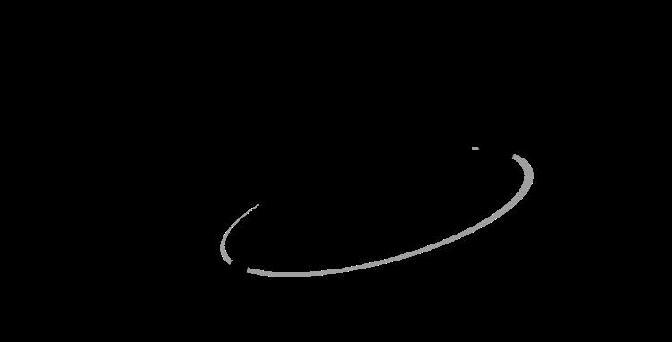 MAIN logo BW for light background